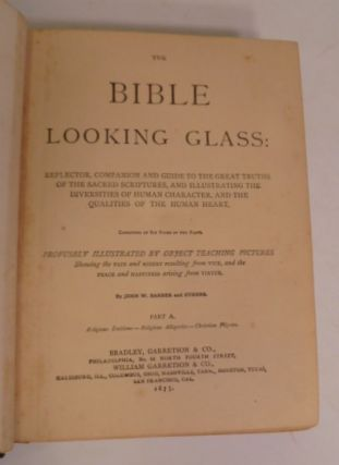 The Bible Looking Glass:
