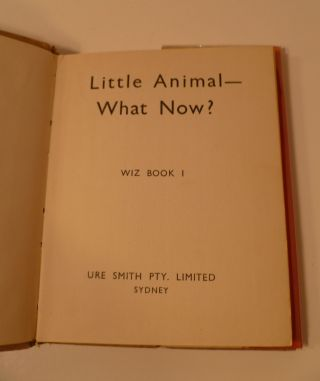 Little Animal What Now?